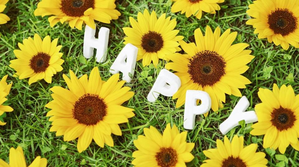 happy-fleur